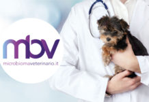 Nasce MicrobiomaVeterinario.it