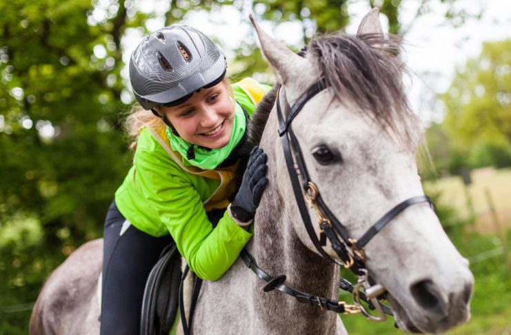 Cavalli da endurance: studio indaga correlazione tra microbioma e performance sportiva